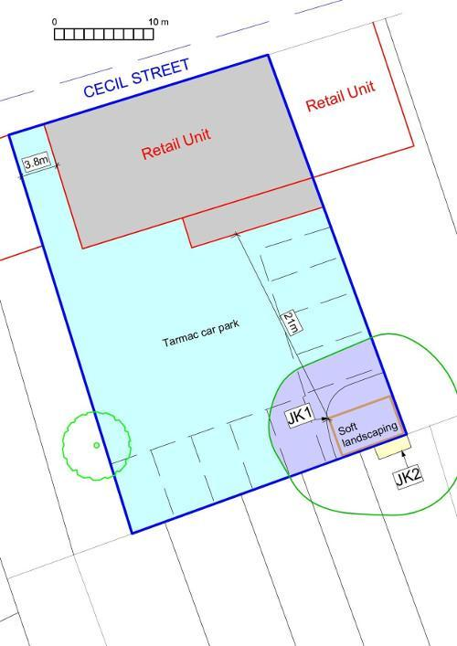Japanese knotweed site plan, site survey