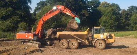 Commercial Japanese knotweed excavation