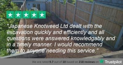 Japanese Knotweed Ltd Customer Review